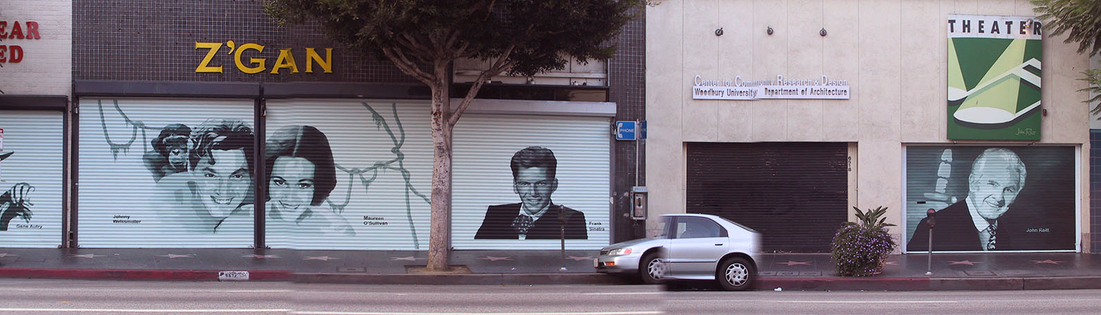 Weismuller, O'Sullivan,Sinatra and Raitt painted on doors
